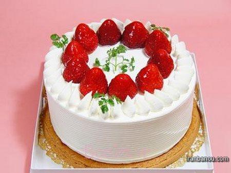 کیک ساده با ماست
