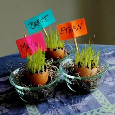 سبزه عید،مدل کاشت سبزه عید ،سبزه تخم مرغی،هنر در خانه