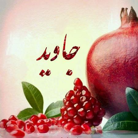 عکس برای پروفایل شب یلدا