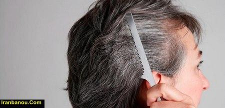 دانه های سفید انتهای مو